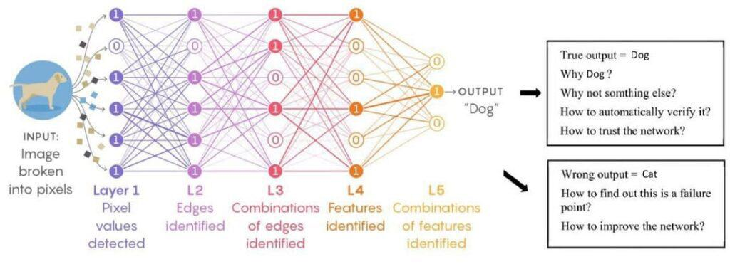 Data Science Neural Network Example Input Output Visualization.